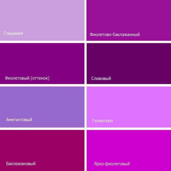 цвет лиловый картинки