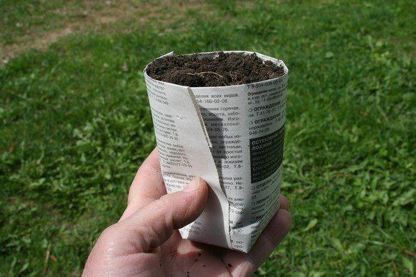 Как сделать газетный стаканчик для рассады - Veproekt.ru