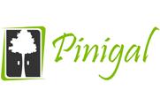 Pinigal -