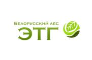 ЭТГ - ООО