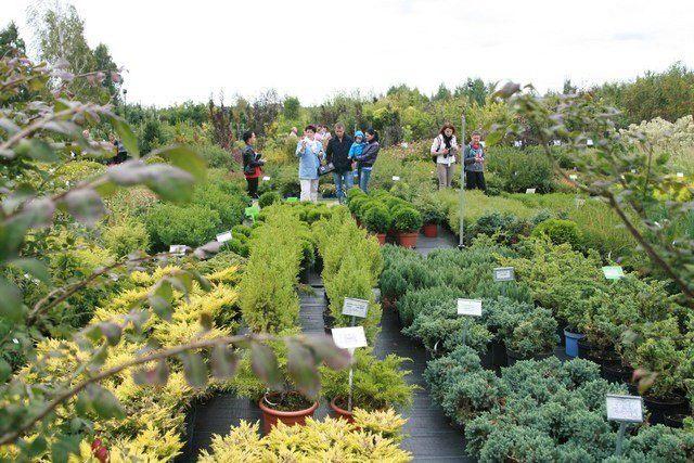 Выставка в ботаническом саду