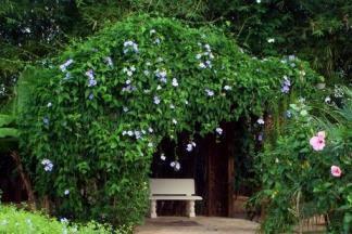 Как сделать садовые арки своими руками - лучшее украшение дачного участка