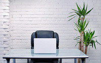Фитодизайн вашего кабинета