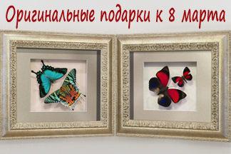 Бабочки в рамке -  настоящий изысканный подарок!