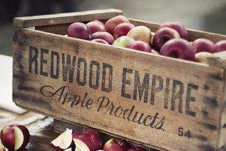 Как правильно собрать и сохранить яблоки и груши: 5 полезных советов