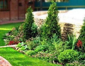 Секреты вертикального озеленения?