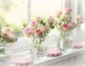 Розы: размножение черенками
