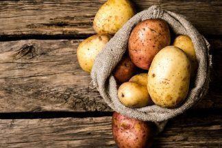 Характеристика сортов картофеля: все, что нужно знать о самых урожайных видах