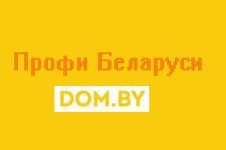 Знакомьтесь, проект «ПРОФИ Беларуси»