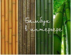 Бамбук в интерьере: 44 примера для вдохновения
