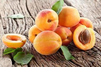 Лучшие сорта абрикосов: какой подходит для вашего сада?