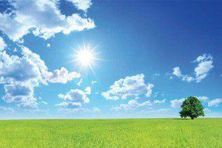 Тест: какая погода у вас в доме?