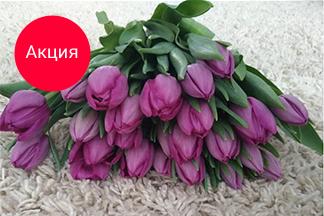 -15% на новую коллекцию «Парадиз» до 31 марта от компании «Флорсервистрейд»