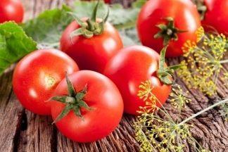 Как защитить помидоры от фитофторы? Лечим томаты в теплице и открытом грунте