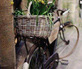 Велосипед в интерьере: способы хранения