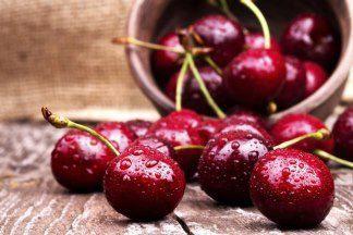 Уход и подкормка вишни весной: как получить богатый урожай?
