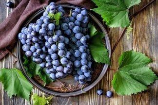 Сорта винограда кишмиш: выбираем лучшие