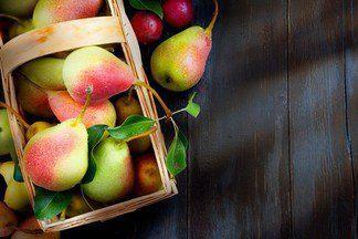 Неприхотливые, красивые и вкусные — лучшие сорта груш, на которые стоит обратить внимание